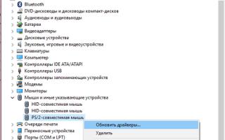 Как включить тачпад на ноутбуке в Windows 10 если он не работает