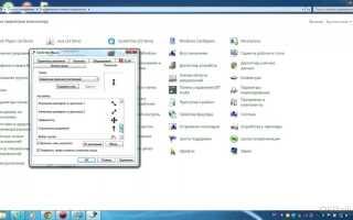 Активация обратной прокрутки в Windows