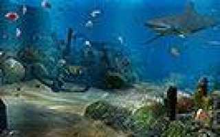 Живой аквариум на рабочем столе / 3D Aquarium [2006, Скринсейвер]