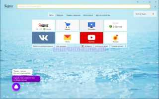 8 лучших браузеров для компьютера