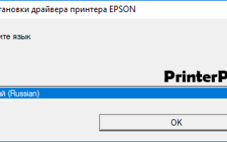 Скачать драйвер для принтера Epson L110 бесплатно