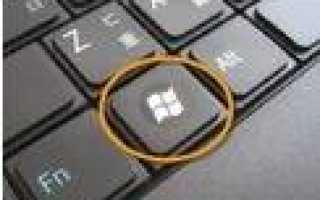 Настройка IP адреса вручную: как и где установить и прописать