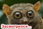 Zasmotrelsya-kartinki.png