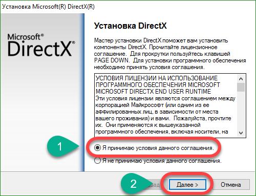 Принятие-условий-DirectX.png