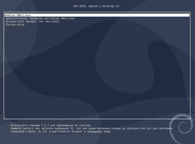 Grub_does_not_load_after_install_Debian_10_8.jpg