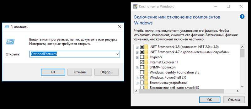 optimize-7.jpg