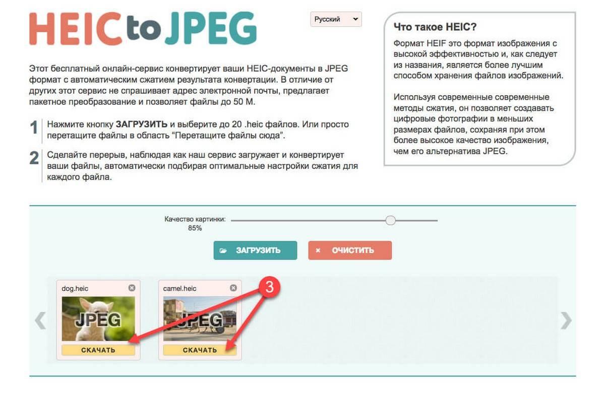 heic2jpeg-3.jpg