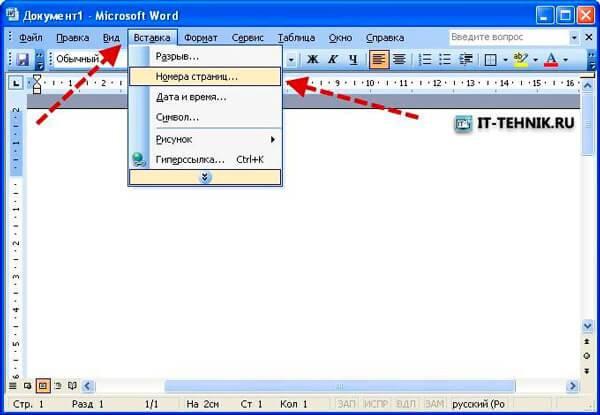 page_number_word2003_1.jpg