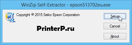 Epson-Perfection-V330-1.png