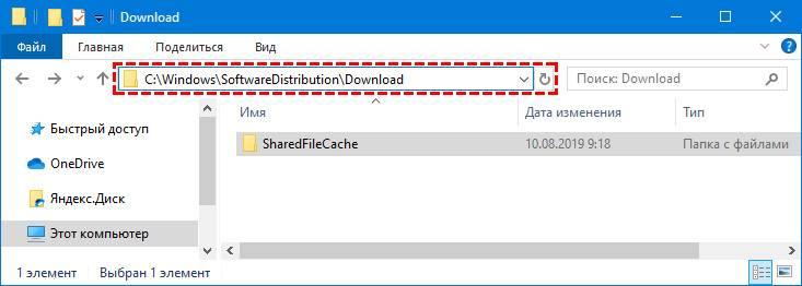 Papka-SoftwareDistribution.jpg