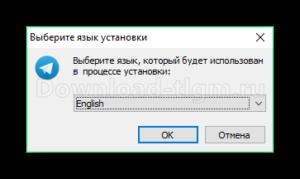 vybor-yazyka-300x179.png