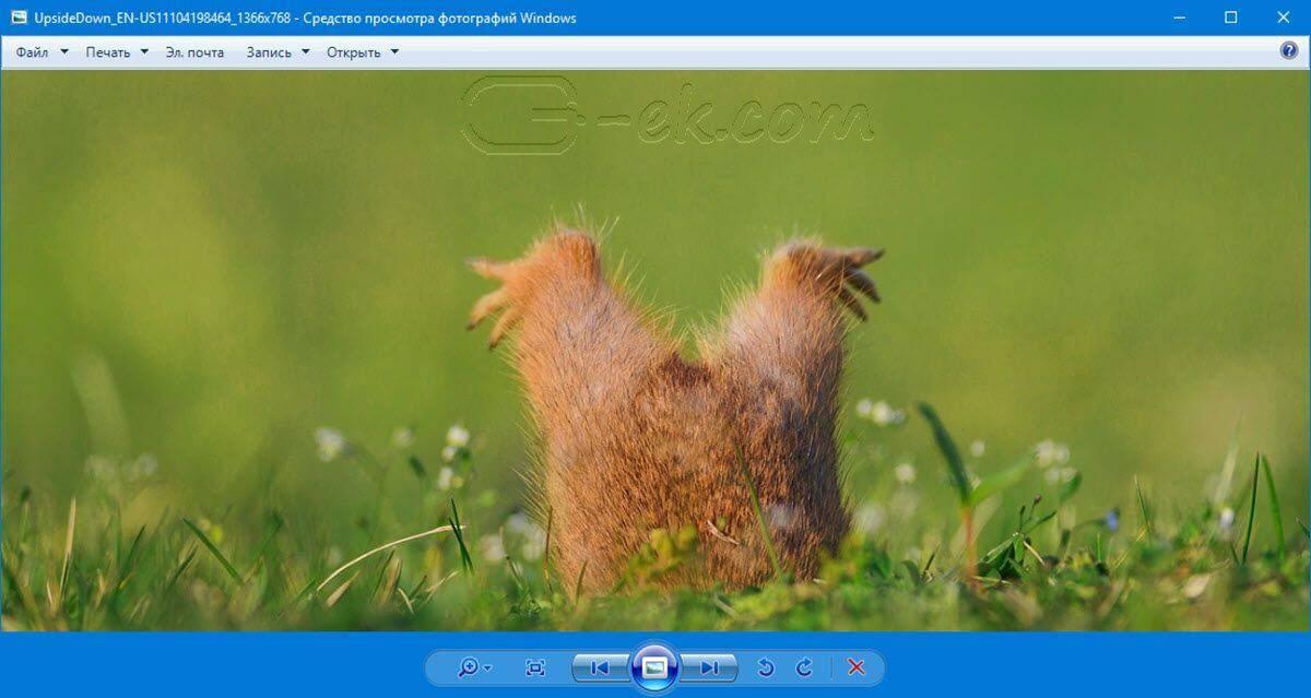 prosmotr-fotografij-v-windows-10.jpg