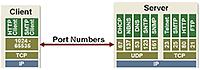 network-port-logo.png