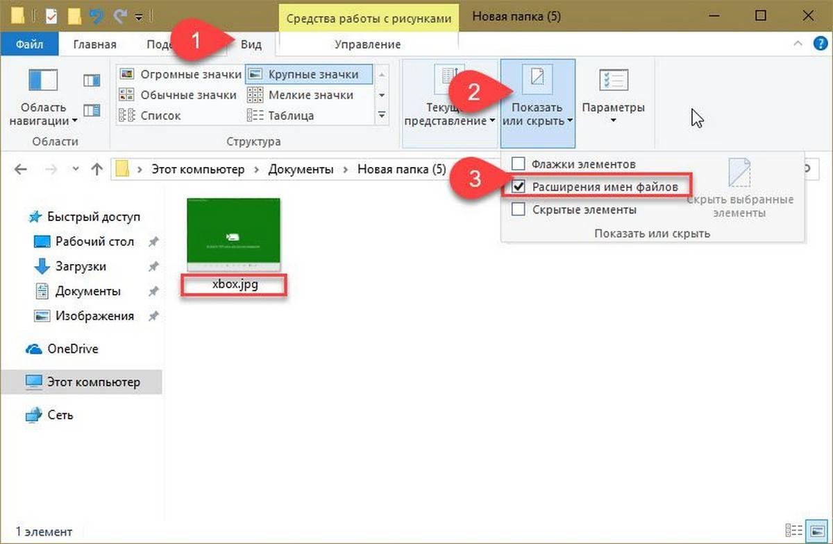 folder-pic.jpg