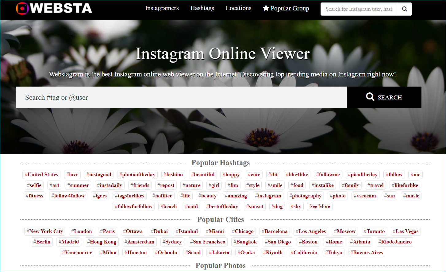 Interfejs-servisa-Webstagram.png