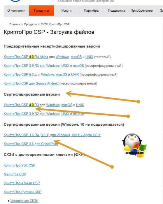 skachat-kriptopro-dlya-windows-10-03.jpg