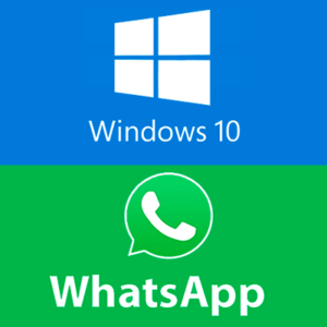 whatsapp-windows-10-logo-300x300.png