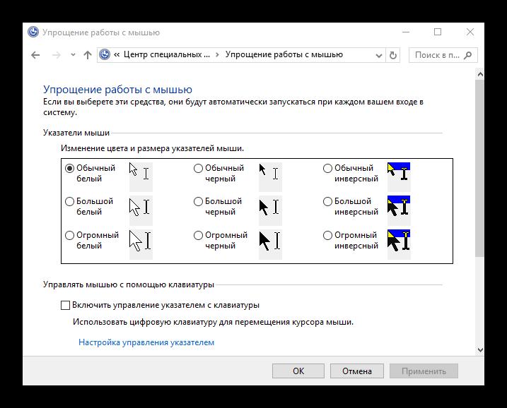 Izmnenie-ukazatelya-mishyi-v-Vindovs-10.png