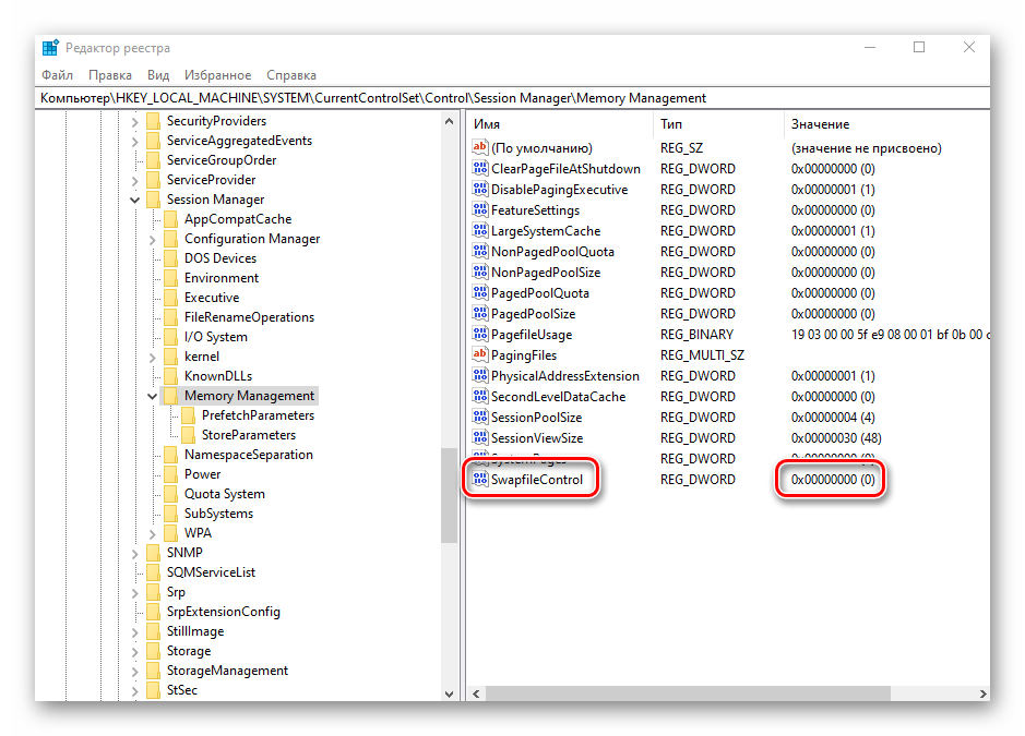 proverka-znacheniya-fajla-swapfilecontrol-dlya-otklyucheniya-fajla-podkachki-v-windows-10.png
