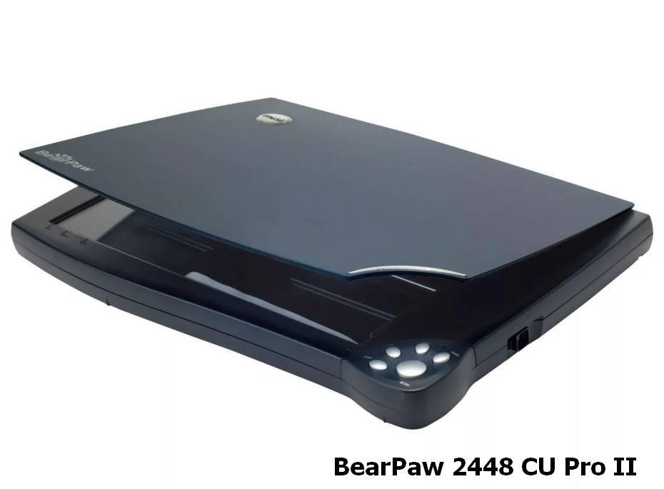 BearPaw_2448_CU_Pro_2.jpg
