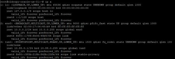 OpenVPN-internet-gateway-002-thumb-600xauto-10602.png