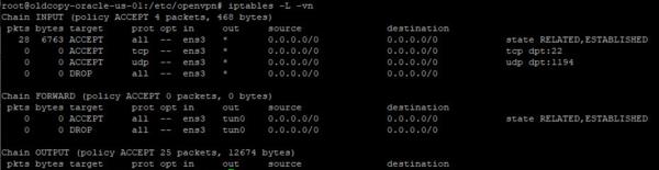 OpenVPN-internet-gateway-003-thumb-600xauto-10605.png