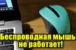 Besprovodnaya-myish-ne-otzyivaetsya.png
